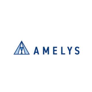 アメリス株式会社 Amelys Co.,Ltd.