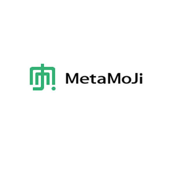 株式会社MetaMoJiのイメージ画像