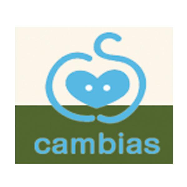 株式会社カムビアスのイメージ画像