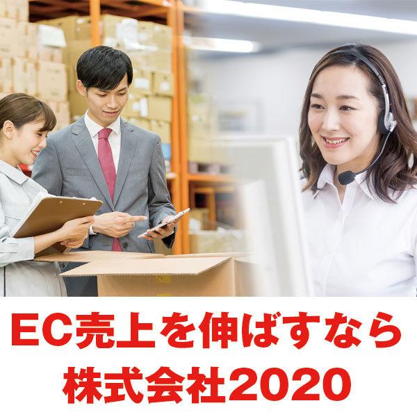 EC業務全てのノウハウで貴社ECを強力サポートのイメージ画像
