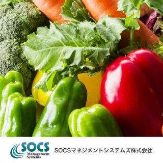 SOCSマネジメントシステムズ株式会社のイメージ画像